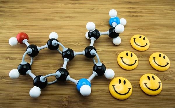 серотонин гормон счастья