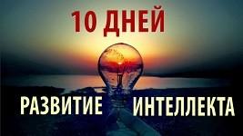 как развить интеллект за 10 дней