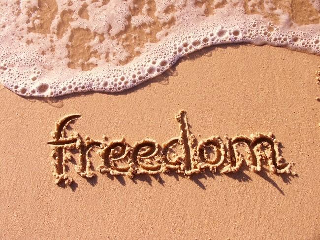 свобода или метамфетамин