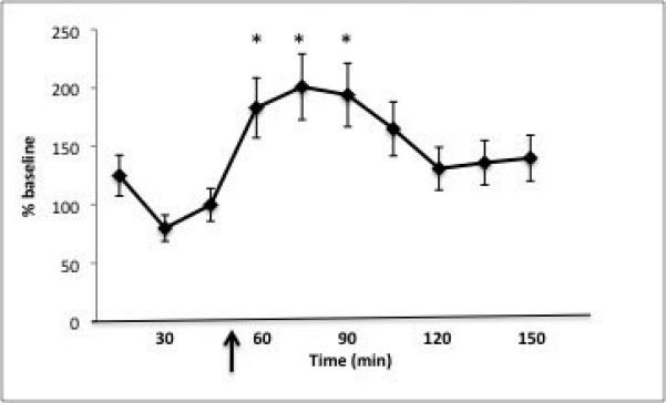 йохимбин норадреналин крысы