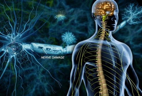 нервы экстраверта