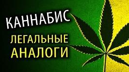 Пирацетам марихуана масло марихуаны курить
