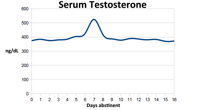 воздержание тестостерон