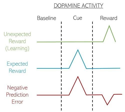 дофамин и мотивация в мозге
