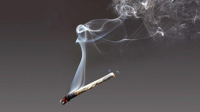 вред марихуаны