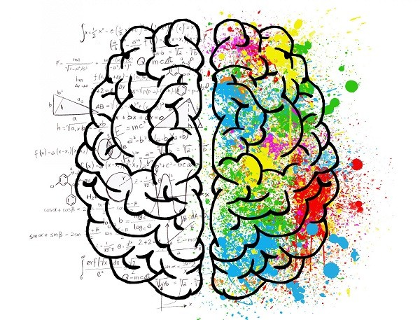 опыт и мозг