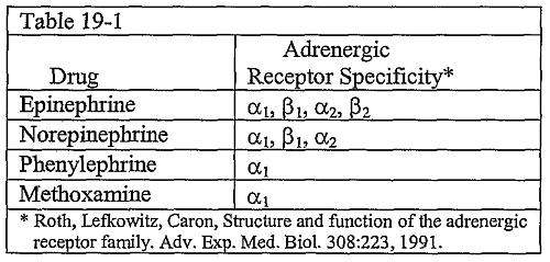 адренорецепторы
