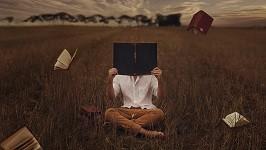 о чтении и быстром анализе текста
