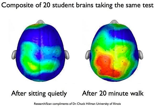 бег и мозг