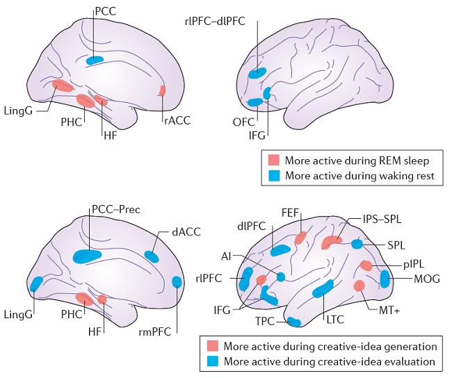 мозг меняется креатив