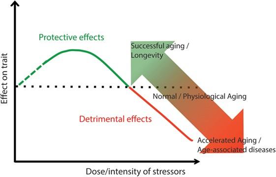 эффекты вещества
