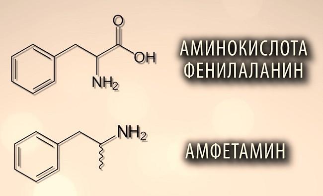 фенилаланин и амфетамин