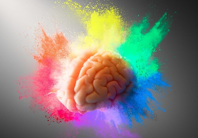 Скорость работы мозга