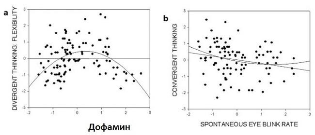Дофамин и конвергенция