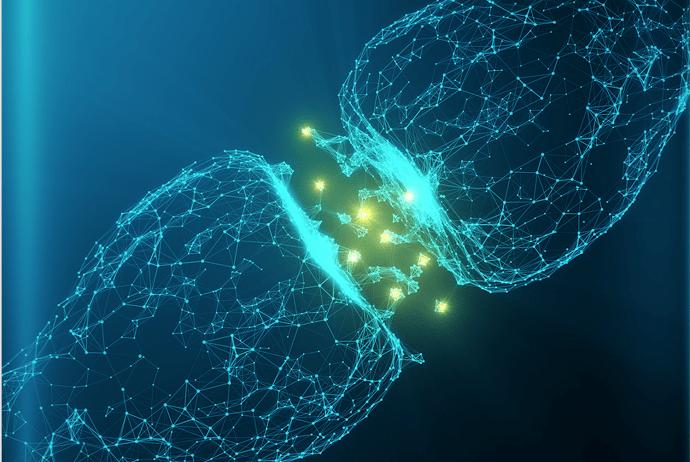 нейромедиаторы и успех